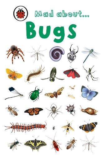 Mad About Bugs (Hardback)