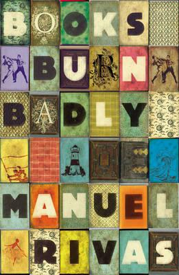 Books Burn Badly (Hardback)