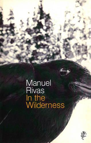 In The Wilderness (Paperback)