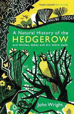 A Natural History of the Hedgerow: and ditches, dykes and dry stone walls (Paperback)