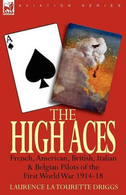 The High Aces: French, American, British, Italian & Belgian Pilots of the First World War 1914-18 (Paperback)