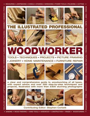 Illustrated Professional Woodworker (Paperback)