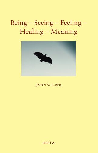 Being - Seeing - Feeling - Healing - Meaning: New Poems 1999-2009 (Paperback)