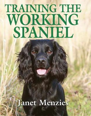 Working Spaniel By Janet Menzies