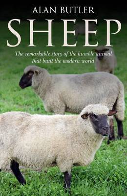 Sheep: The Remarkable Story of the Humble Animal That Built the Modern World (Paperback)