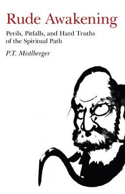 Rude Awakening: Perils, Pitfalls, and Hard Truths of the Spiritual Path (Paperback)