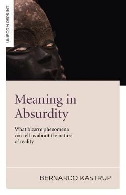 Meaning in Absurdity: What Bizarre Phenomena Can Tell Us About the Nature of Reality (Paperback)