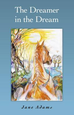 The Dreamer in the Dream (Paperback)