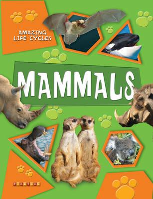 Amazing Life Cycles: Mammals - Amazing Life Cycles No. 1 (Paperback)