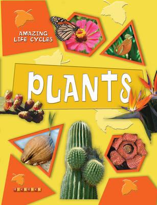 Plants - Amazing Life Cycles No. 6 (Paperback)