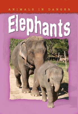 Animals in Danger: Elephants - Animals in Danger No. 6 (Paperback)