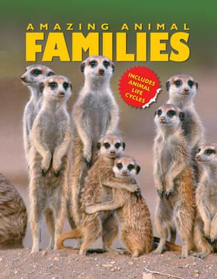 Amazing Animal Families (Paperback)