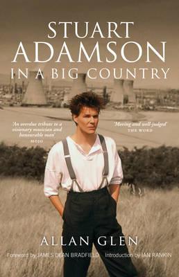 Stuart Adamson: In A Big Country (Paperback)