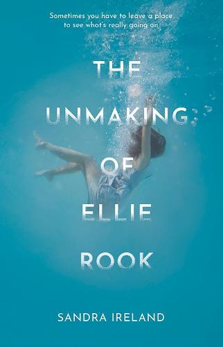 The Unmaking of Ellie Rook (Paperback)