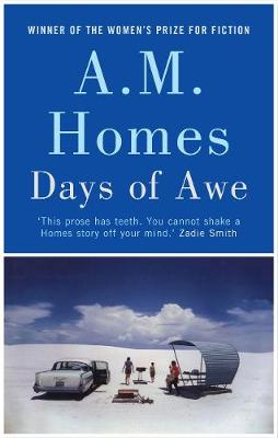 Days of Awe (Hardback)