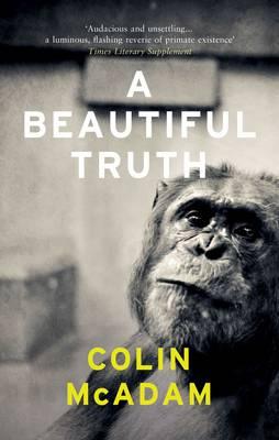 A Beautiful Truth (Paperback)