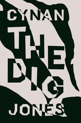 The Dig (Hardback)