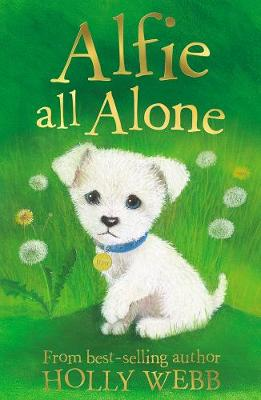 Alfie All Alone - Holly Webb Animal Stories 2 (Paperback)