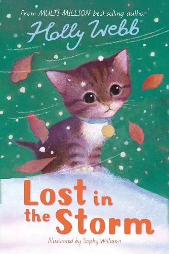 Lost in the Storm - Holly Webb Animal Stories 3 (Paperback)