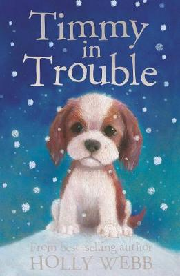 Timmy in Trouble - Holly Webb Animal Stories 7 (Paperback)