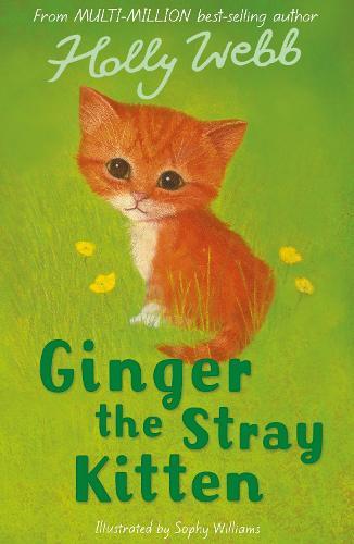 Ginger the Stray Kitten - Holly Webb Animal Stories 8 (Paperback)