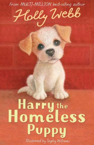 Harry the Homeless Puppy - Holly Webb Animal Stories 9 (Paperback)
