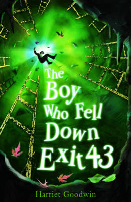 The Boy Who Fell Down Exit 43 (Paperback)
