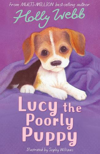 Lucy the Poorly Puppy - Holly Webb Animal Stories 16 (Paperback)