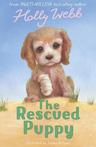 The Rescued Puppy - Holly Webb Animal Stories 18 (Paperback)