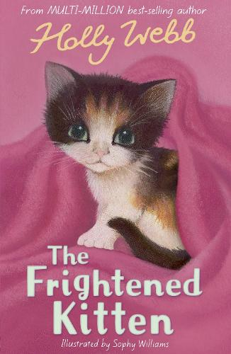 The Frightened Kitten - Holly Webb Animal Stories 21 (Paperback)