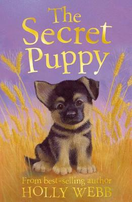 The Secret Puppy - Holly Webb Animal Stories 22 (Paperback)