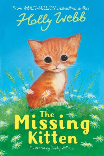The Missing Kitten - Holly Webb Animal Stories (Paperback)
