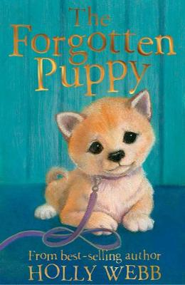 The Forgotten Puppy - Holly Webb Animal Stories 29 (Paperback)