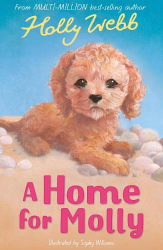 A Home for Molly - Holly Webb Animal Stories 31 (Paperback)