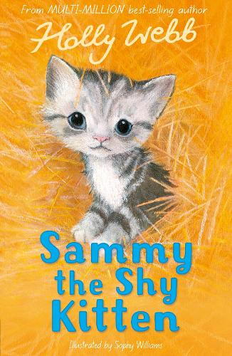 Sammy the Shy Kitten - Holly Webb Animal Stories 32 (Paperback)