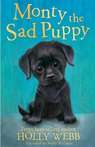Monty the Sad Puppy - Holly Webb Animal Stories 35 (Paperback)