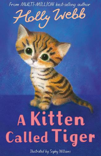 A Kitten Called Tiger - Holly Webb Animal Stories 37 (Paperback)