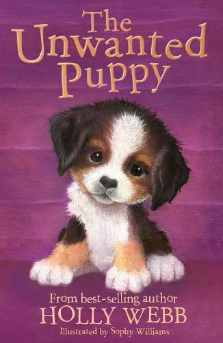 The Unwanted Puppy - Holly Webb Animal Stories 38 (Paperback)