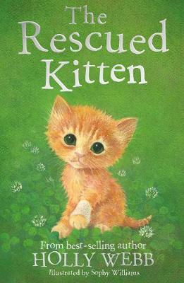 The Rescued Kitten - Holly Webb Animal Stories 39 (Paperback)