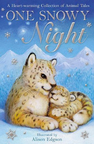 One Snowy Night - Animal Anthologies (Paperback)