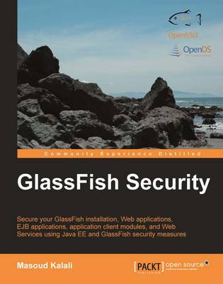 GlassFish Security (Paperback)