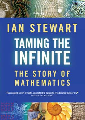 Taming the Infinite: The Story of Mathematics (Hardback)