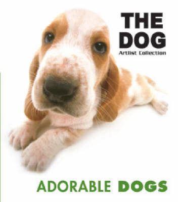 Adorable Dogs (Paperback)