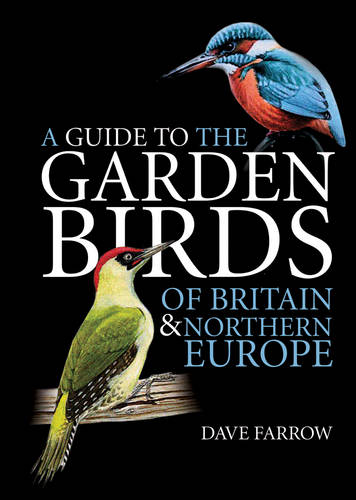 A Guide to the Garden Birds of Britain and Northern Europe (Paperback)