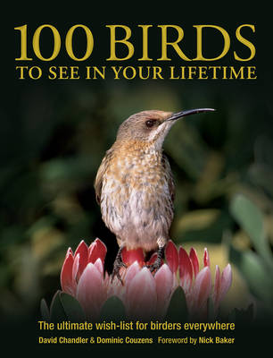 100 Birds to See in Your Lifetime (Paperback)