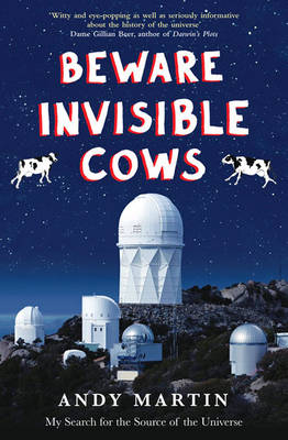 Beware Invisible Cows: My Search for the Soul of the Universe (Paperback)