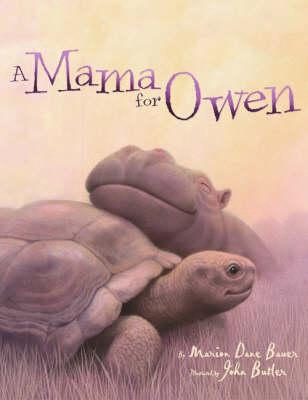 A Mummy for Owen (Paperback)
