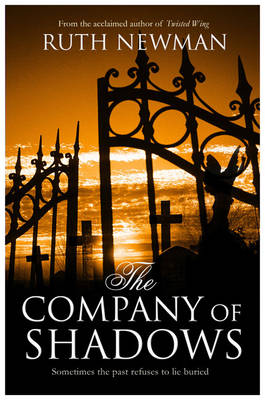 The Company of Shadows (Paperback)