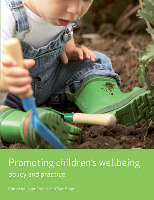 Promoting children's wellbeing: Policy and practice - Working Together for Children Series (Paperback)