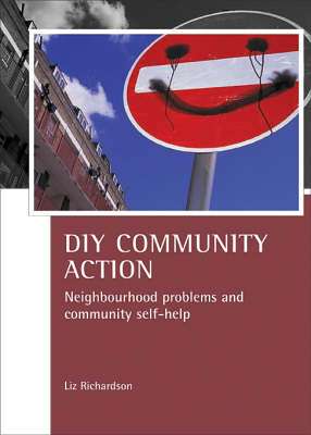 DIY Community Action: Neighbourhood problems and community self-help - CASE Studies on Poverty, Place and Policy (Paperback)